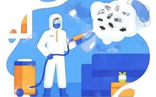 Дезинсекция – защита от насекомых вредителей